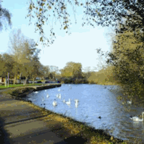 The river in wellingborough